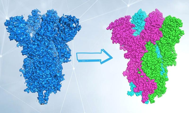 Cryo-EM_piccoli_elettroni_visualizzare_grandi_molecole_UniSR_4