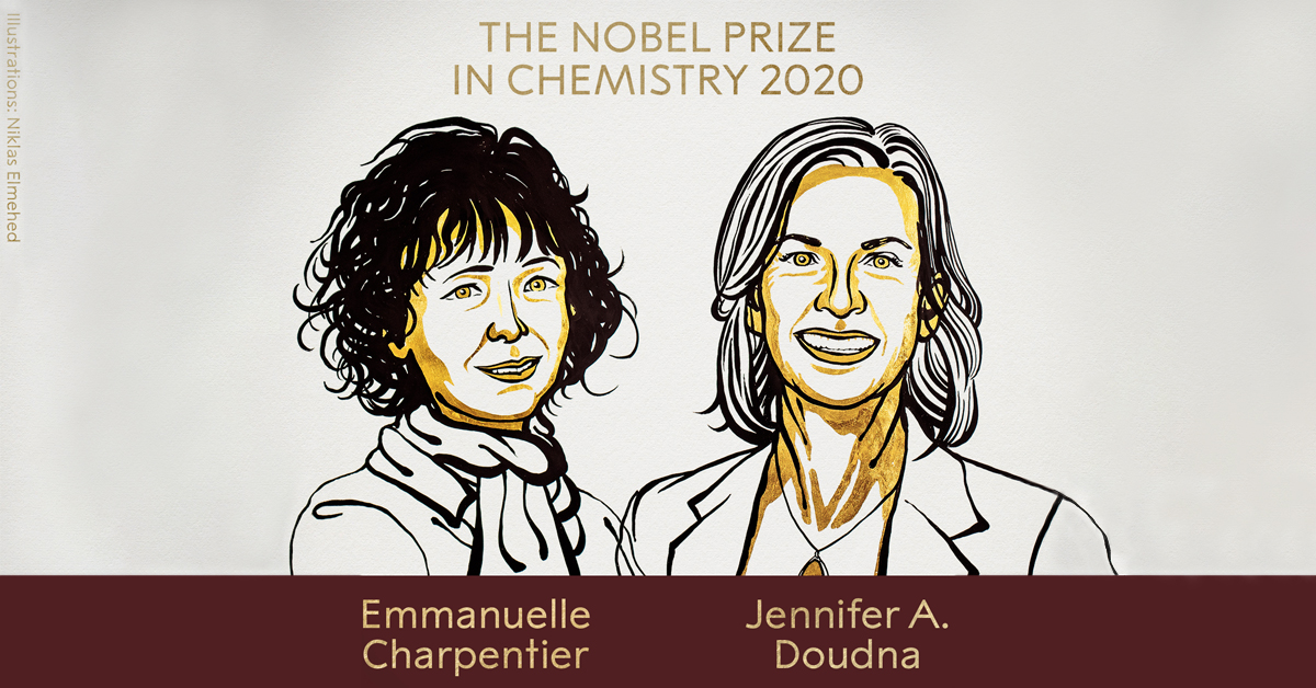 "The ""female"" Nobel Prize: a step to bridge the gender gap?"