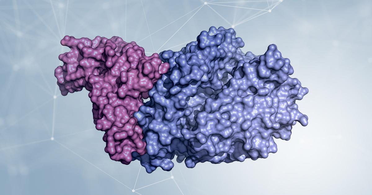 La biologia strutturale per SARS-CoV-2: la proteina Spike