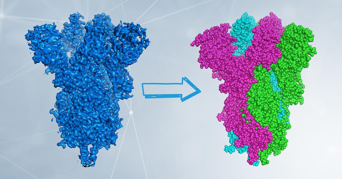 Cryo-EM: piccoli elettroni per visualizzare grandi molecole